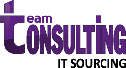 Logo Team Consulting
